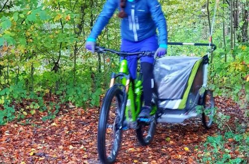 Faszination E-Bike Blog Veronika Kupfer